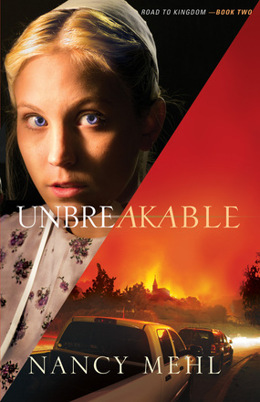 unbreakable book cover