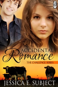 accidental romance book cover